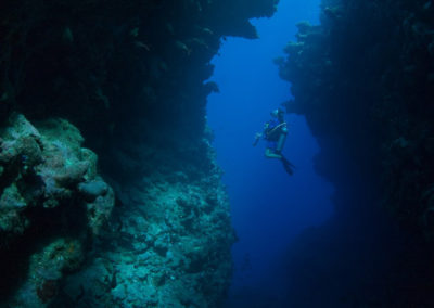 The Arue Fault, Tahiti -Plongée avec Topdive. Copyright Sylvain Girardot