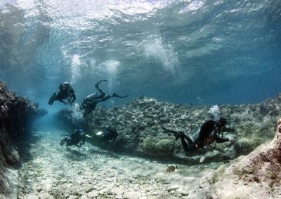 Tetiaroa - Divers - Topdive - Photo T-Kotouc