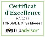 Certificat d'excellence TripAdvisor - Topdive