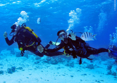 Scuab diving in Bora Bora with Topdive