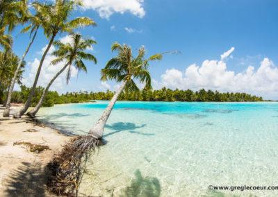 Rangiroa's Blue lagoon - Topdive ©Greglecoeur