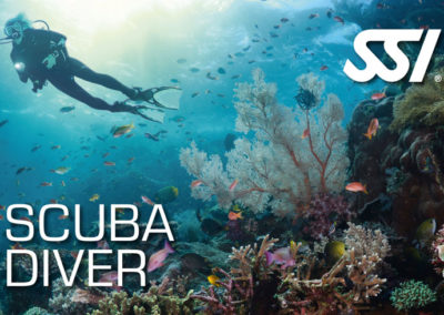 Scuba Diver SSI certification with Topdive Polynesia