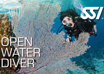 Open Water Diver SSI certification with Topdive Polynesia