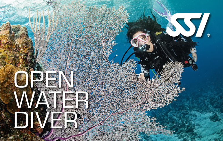 SSI - Open water diver