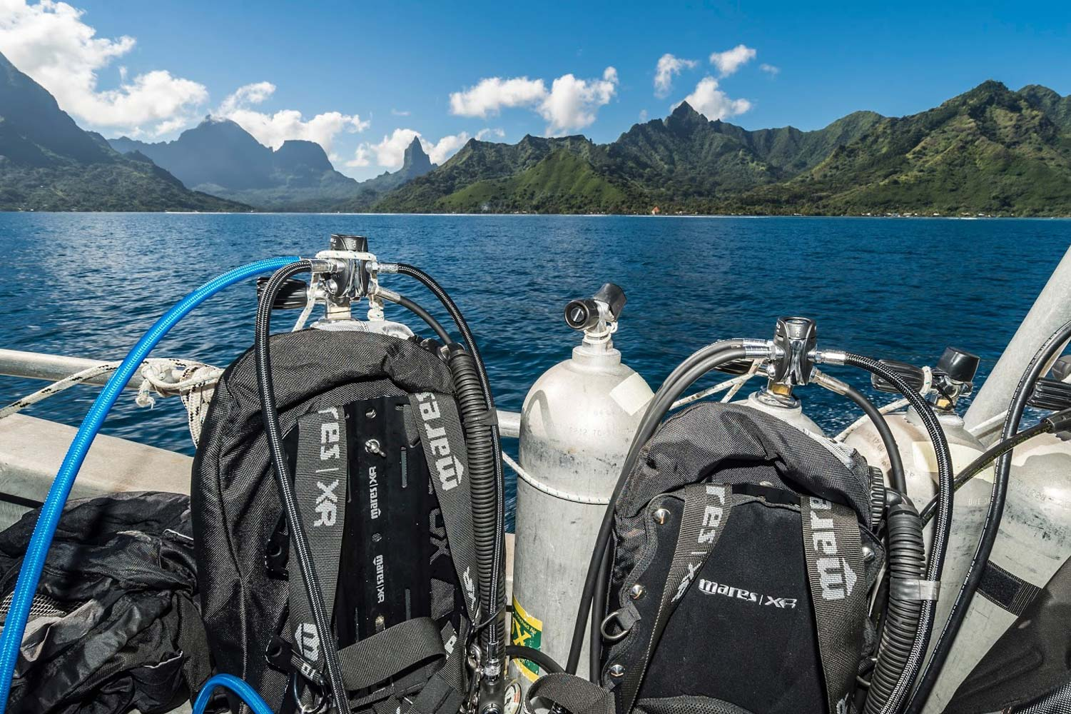 Diving at the Opunohu Canyons in Moorea