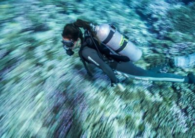 Nitrox scuba diving in Rangiroa with TOPDIVE