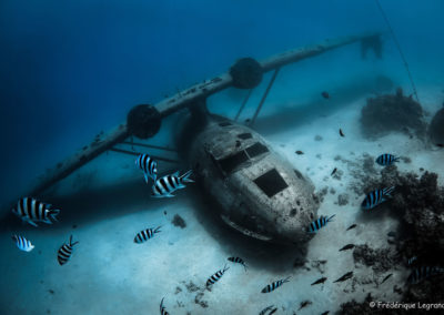 Topdive - The 3 Airplane wrecks-Tahiti-copyrights Frédéric Legrand